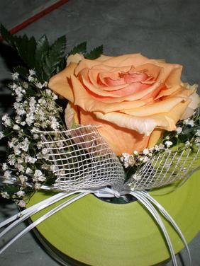 Floare de piept un trandafir