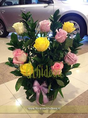 Cos trandafiri culori pastelate