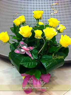 Cos trandafiri galbeni