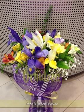 Flori de primavara: frezie si iris